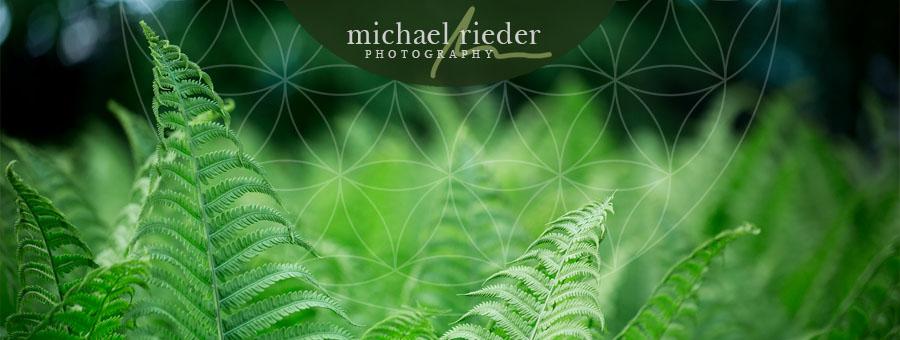 Kontemplative Fotografie (Workshop), Michael Rieder Photography